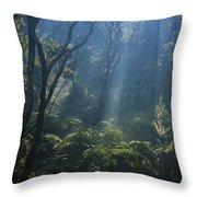 Hawaiian Rainforest Throw Pillow