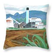 Hawaiian Sugar Mill Throw Pillow
