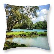 Hawaiian Landscape 5 Throw Pillow