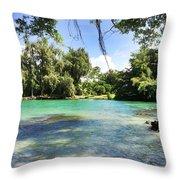 Hawaiian Landscape 4 Throw Pillow