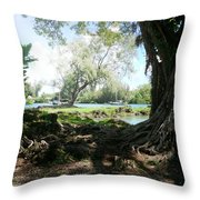 Hawaiian Landscape 3 Throw Pillow