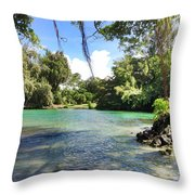 Hawaiian Landscape Throw Pillow