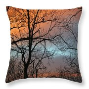 Hawk At Dawn Throw Pillow