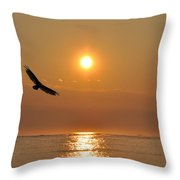 Hawk Flying At Sunrise Throw Pillow
