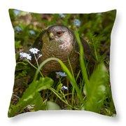 Hawk In The Grass Throw Pillow