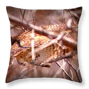 Hawk In The Woods Throw Pillow