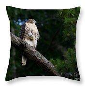 Hawk On Norris Lake Throw Pillow