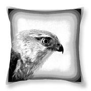 Hawk - Raptor Throw Pillow