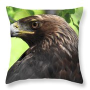 Hawk Scouting Throw Pillow
