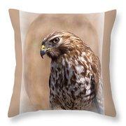 Hawk - Sphere - Bird Throw Pillow