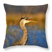 Hawking Heron Throw Pillow