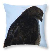 Hawkish Throw Pillow