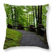 Hawk's Nest Path Throw Pillow