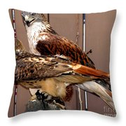 Hawks Throw Pillow