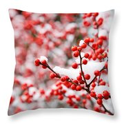 Hawthorn Berries Throw Pillow