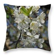 Hawthorn Flowers Throw Pillow