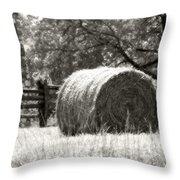 Hay Bale In A Farm Field Throw Pillow