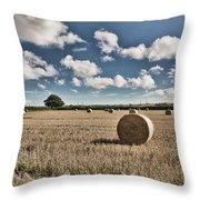 Hay Bales 1 Throw Pillow
