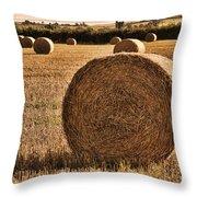 Hay Bales 2 Throw Pillow