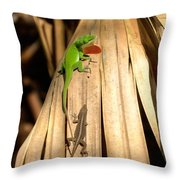 Hay Buddy Throw Pillow
