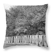 Hay Days Bw Throw Pillow