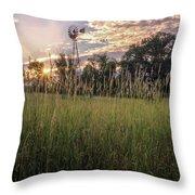 Hay Field Sunset Throw Pillow