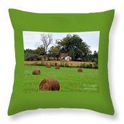 Hay From North Carolina Throw Pillow