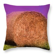 Hay Roll Throw Pillow
