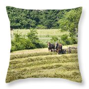 Hay Season Throw Pillow