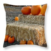 Hay Steps Throw Pillow