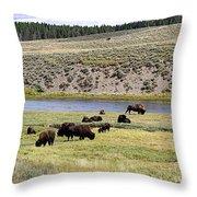 Hayden Valley Bison Herd In Yellowstone National Park Throw Pillow