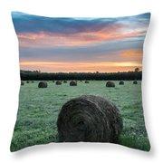 Hayfield Sunrise 3d21735 Throw Pillow
