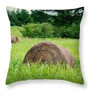 Hayroll Field Throw Pillow