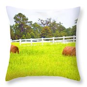 Hayrolls And Fences Throw Pillow