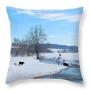 Hays Creek Winter Throw Pillow