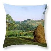 Haystack At The Hillside, Transylvania Throw Pillow