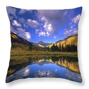 Haystack Mountain Reflected In Beaver Pond Throw Pillow