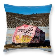 Haystack Rock Throw Pillow by Jon Burch Photography