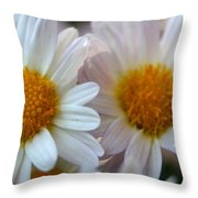 Hazy Day Daisies  Throw Pillow