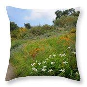 Hazy Morning In The Garden Throw Pillow