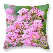 Hazy Pink Crepe Mertle Throw Pillow