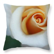 Hazy Rose Throw Pillow