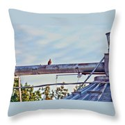 Hdr Bird On A Pipeline II Throw Pillow