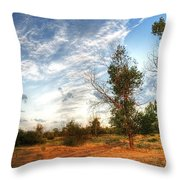 Hdr Landscape Throw Pillow