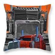 Hdrcatr3079a-13 Throw Pillow