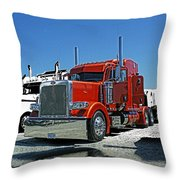 Hdrcatr3080-13 Throw Pillow