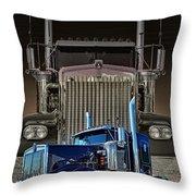 Hdrcatr3101a-13 Throw Pillow