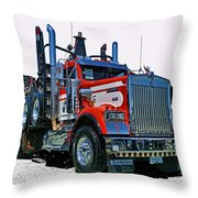 Hdrcatr3120-13 Throw Pillow