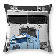 Hdrcatr3137-13 Throw Pillow