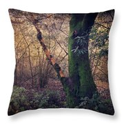 He Filled My Days With Endless Wonder Throw Pillow